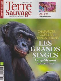 terre_sauvage_2015_03_couv